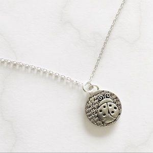 Kevin N' Anna Ladybug 🐞 Necklace